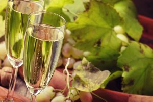 Sparkling Wine with plants in the background